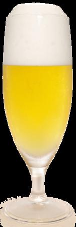アサヒ クリアアサヒグラス画像