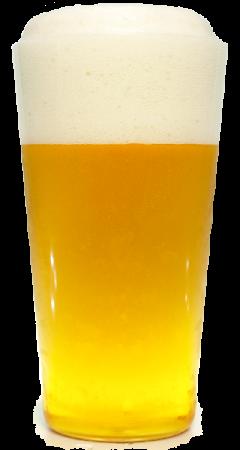 サッポロ 銀座LIONプレミアムグラス画像