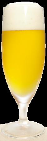 サンサンオーガニックビールグラス画像